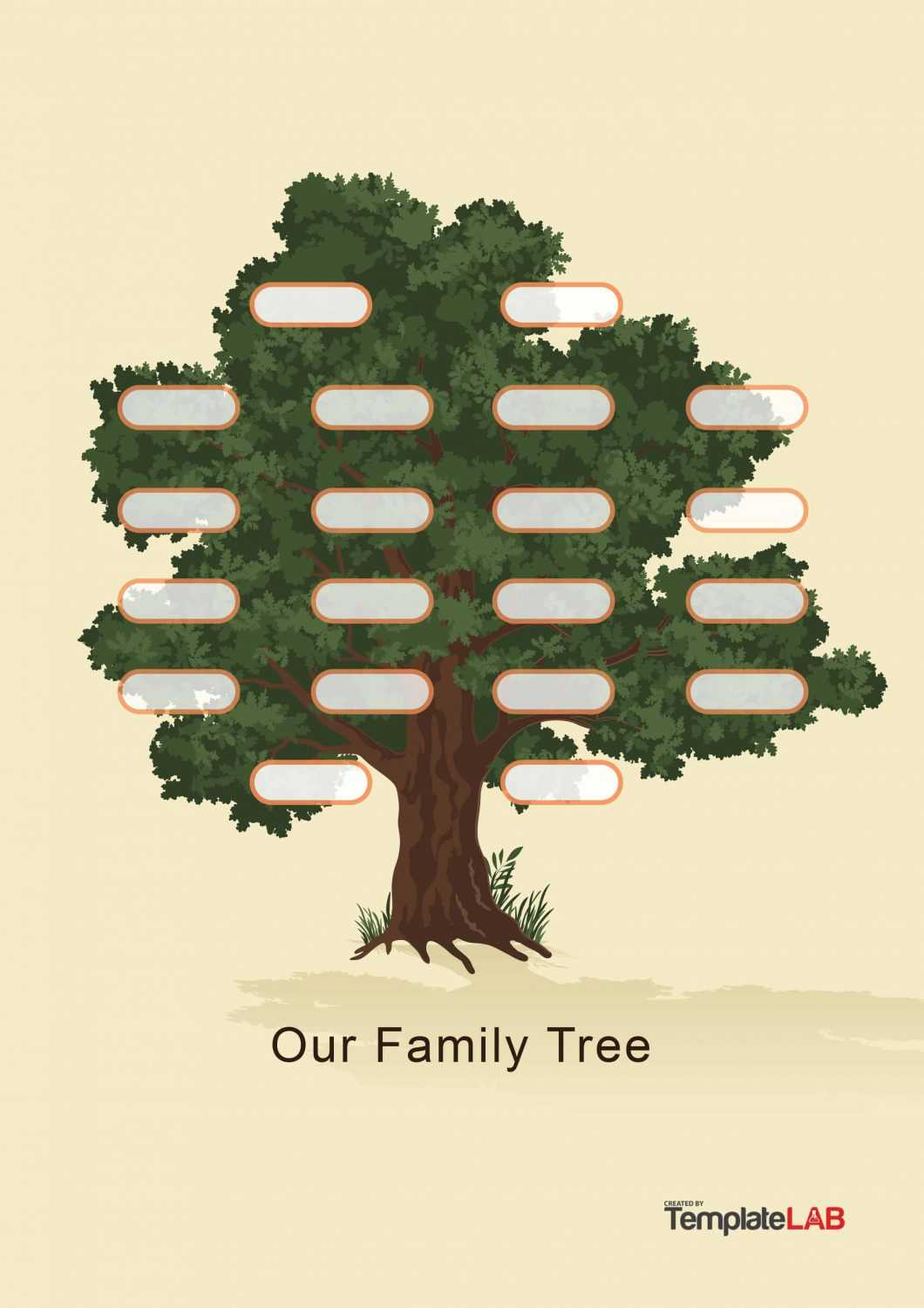 41+ Free Family Tree Templates (Word, Excel, Pdf) ᐅ Templatelab With 3 Generation Family Tree Template Word
