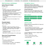 Financial Analyst Resume [The Ultimate 2020 Guide] In Credit Analysis Report Template