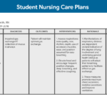 Nursing Care Plan (Ncp): Ultimate Guide And Database With Nursing Care Plan Templates Blank